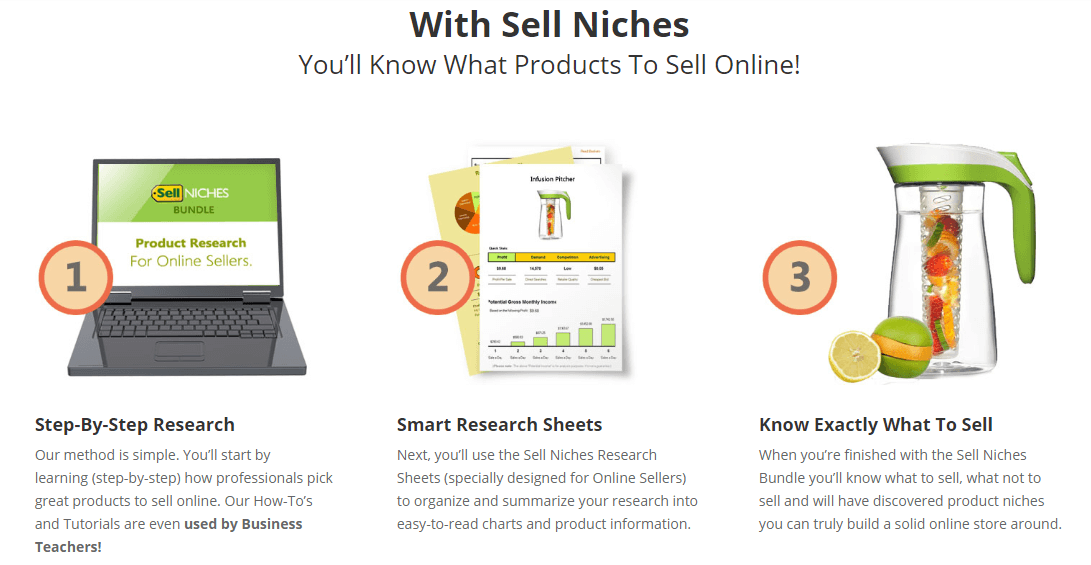 Sell Niches Bundle Homepage